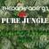 Pure Jungle - Thedarkfader92 image
