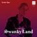 SwankyLand #065 (Drum & Bass Edition) image