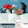"""""""Γάτες από Σόι"""" Η πρώτη του 2019 @03_01_2019 image"""