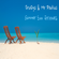 Dru:Gys & Mr Paulius - Summer Sax Grooves image