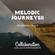 MELODIC JOURNEYS 11 Mixed By LuNa & DJ HIROGRESSIVE image