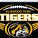 Elmwood Park Tigers image