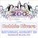 Electric Zoo Countdown Mix - Robbie Rivera image