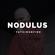Nodulus x FatKidOnFire mix image