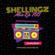 Shellingz Mix EP 160 image