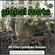 Global Roots (El ritmo de mi gente around the world Sr Priego Still in Lockdown Vinyl-Only Session) image