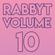 RABBYT - Volume 10 - 2015 image