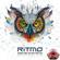 RITMO - Some Kind Of Rhythm 10 image