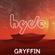 Gryffin | Megamix 2016 image