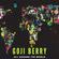 GOJI BERRY @ All Around The World image