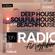 Beachhouse Radio - November 2020 (Episode Twelve) - with Royce Cocciardi image