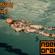 Agent Orange -  Psygressively Delicious 8 image