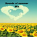 Sounds of Summer, featuring lots of Summer music from 60's 70's 80's and beyond. image