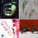 BTTB 2021-09-09 // Sicaria Sound + Kuno + Al Wootton + Scratcha DVA + Koreless + Defrostatica +++ image