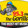 95-3 Gorilla DJ STEEN and Danny Donut Live with Big Freedia image
