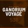 Ganorium Voyage 536 image