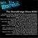#300 StoneBridge BPM Mix image