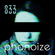 Phonoize 033 - with RAH image