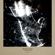 STELLAR CELLAR 7 image