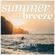 DJ ChrisMü - Summerbreeze 2020 image