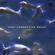 Deep Connection Vol411 [Megapolis FM] image