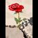 CONCRETE ROSE image