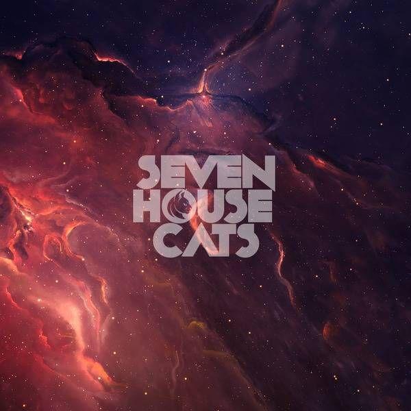 sevenhousecats