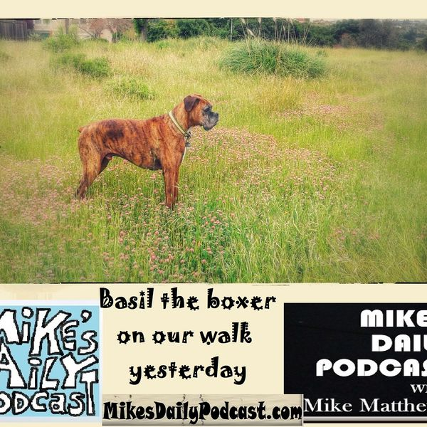 mikesdailypodcast