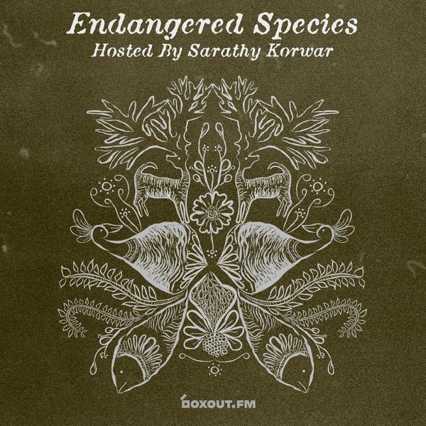 Endangered Species 011 - Sarathy Korwar