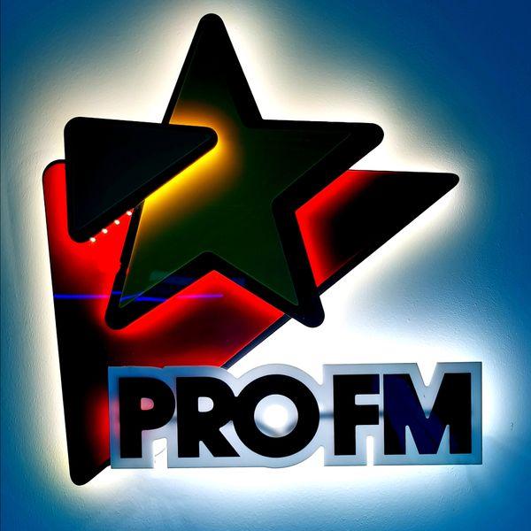 ProFmPartyMix