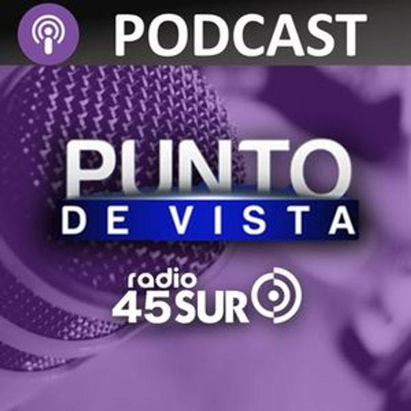 Radio45SurChile