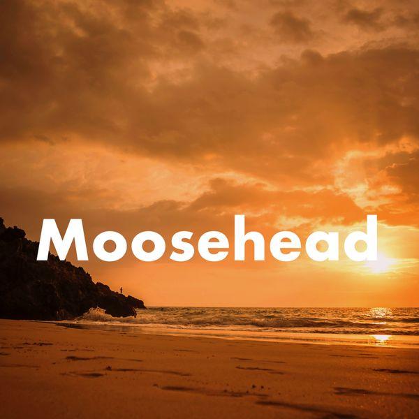 moose-head2