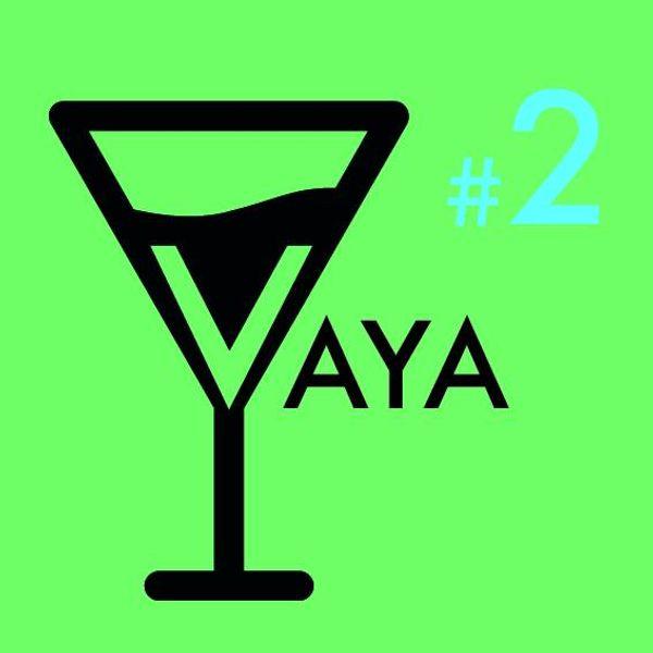 vayavisions