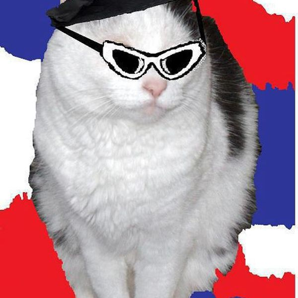 cat-andrew