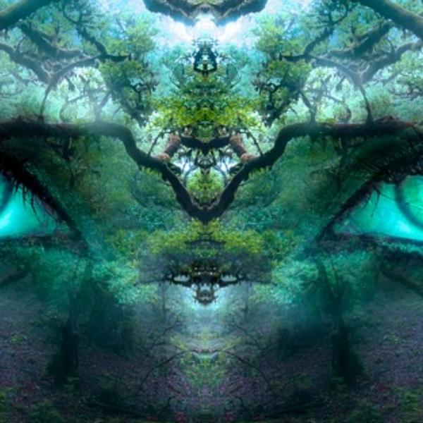 mixcloud Roy_Wolf