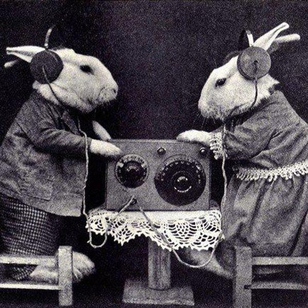 mixcloud Mad_Rabbits