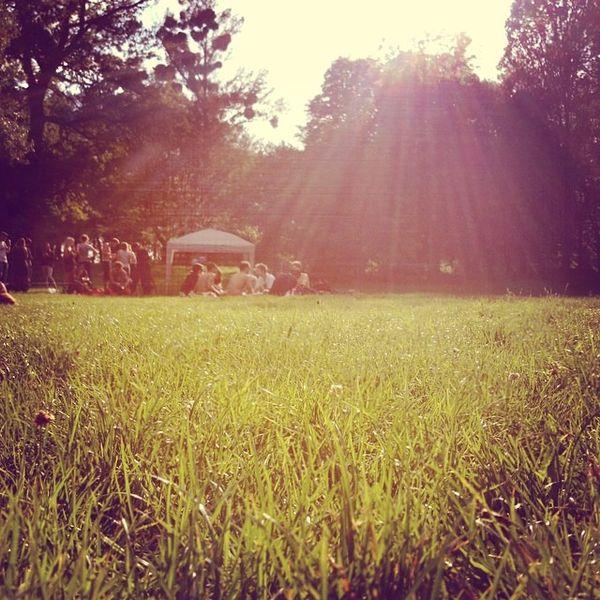mixcloud Emissionen_picnics_Vienna_