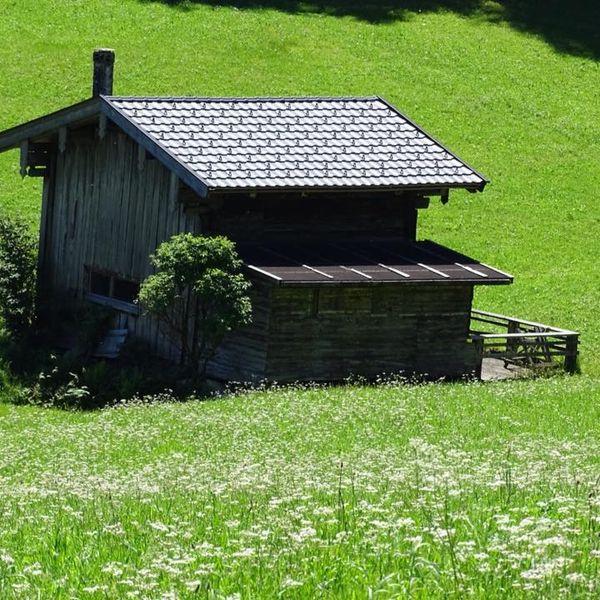 henk-zwijnenberg