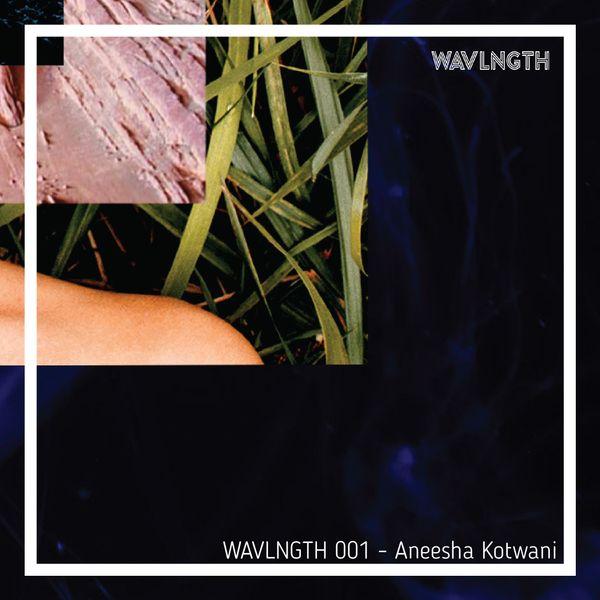 WAVLNGTH 001 - Aneesha Kotwani