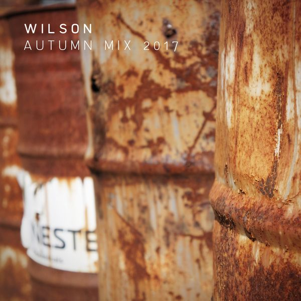 andrew-wilson7