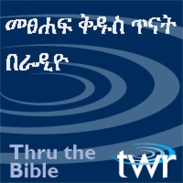 amharicttbtwrorgamharic