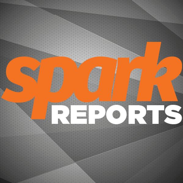 SparkReports