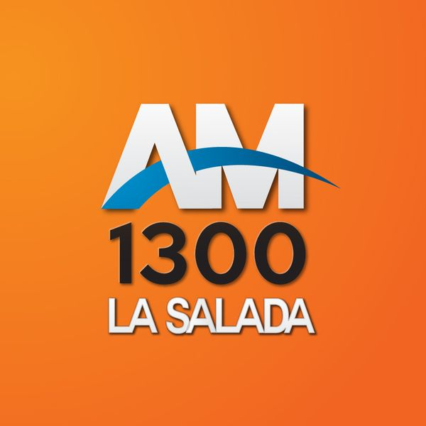 AM1300