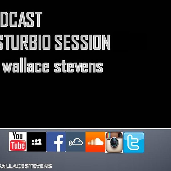 wallace-stevens