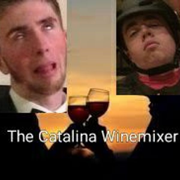 TheCatalinaWineMixer