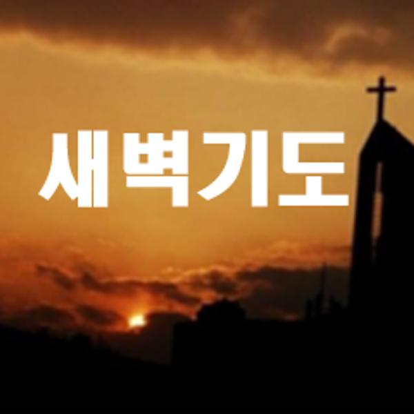 peace-church