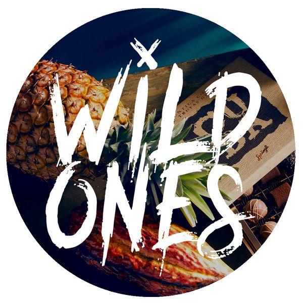 mixcloud wildones91