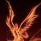 rising @ phoenix , for Jimmy Nutter