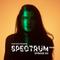 Joris Voorn Presents: Spectrum Radio 213
