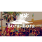 Horace @ Bora Bora 2018 - Part 2